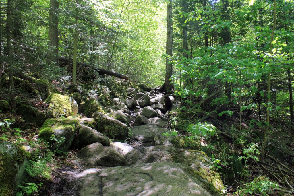 Adirondack Trail