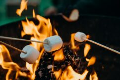 selective focus photography of marshmallows on fire pit
